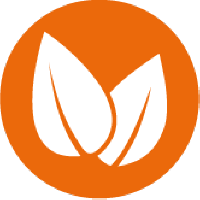Two white leaves on an orange background as a symbol för vegan food