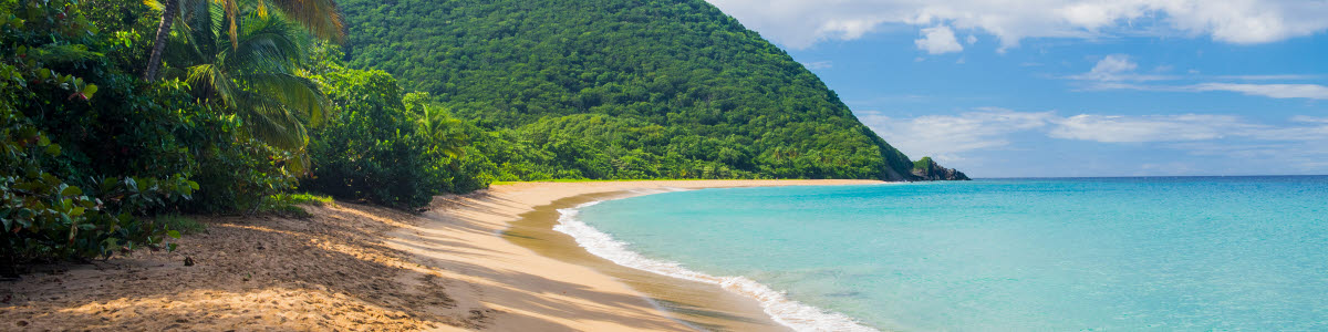 Great beach of Grand Anse near village of Deshaies, Guadeloupe, Caribbean