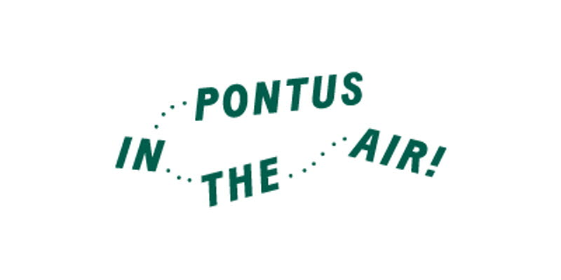 Logotype Pontus in the Air